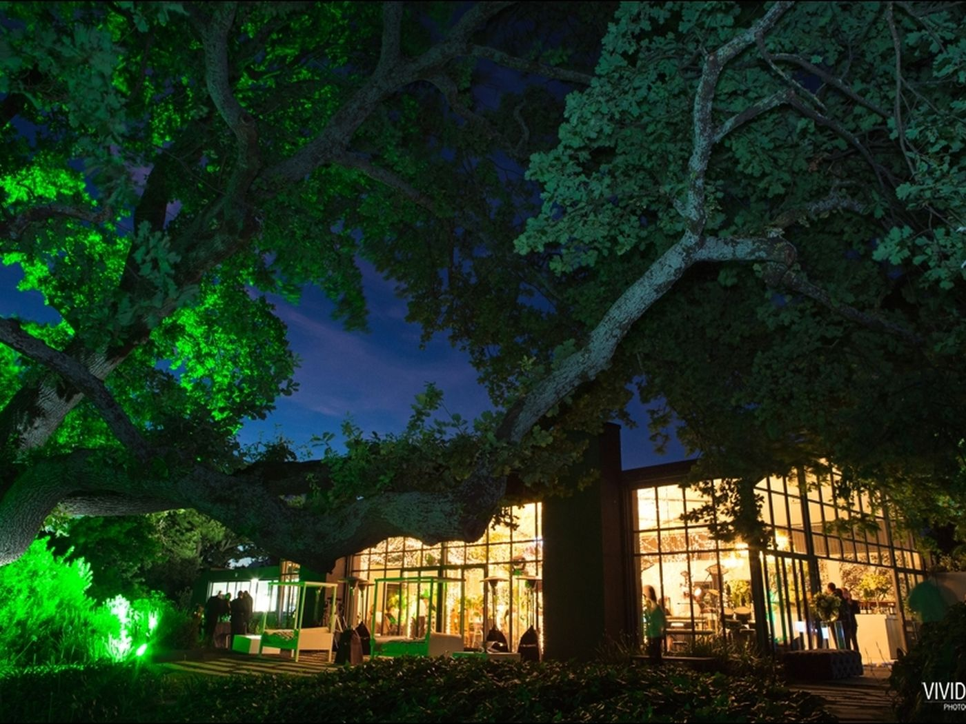 The Conservatory By Night Credit Vivid Blue Photography